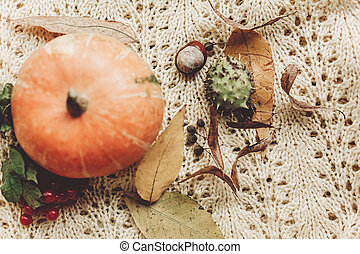halloween or thanksgiving concept greeting card fall flat lay. beautiful pumpkin on knitted sweater with leaves on rustic wooden background, top view. space for text.  cozy autumn mood. holiday