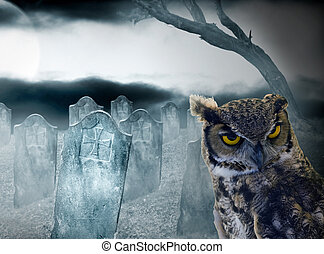 halloween owl in the cemetery at night with full moon