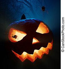 Halloween pumpkin and spiders - Halloween pumpkin ( jack...