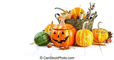 Halloween pumpkin autumn still life at holiday