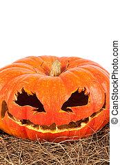 Halloween pumpkin on hay