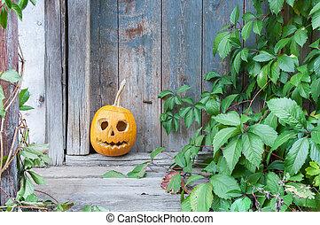 Halloween pumpkin on wooden background