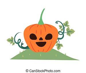 halloween pumpkin with dark face in the field