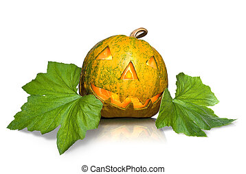 halloween pumpkin with leaves isolated on white