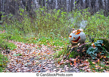 Halloween pumpkin with smoke in the forest