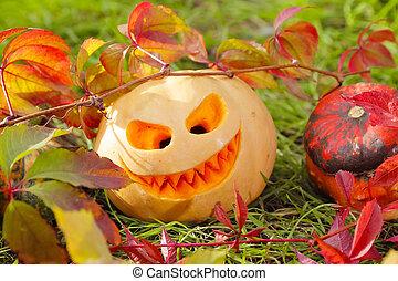Halloween pumpkins in autumn leaves