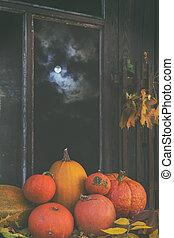 Halloween' pumpkins in the full moon light in a dark room