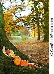 Halloween pumpkins on a tree trunk