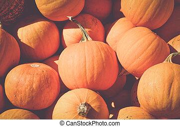 Halloween Pumpkins with Retro Instagram Style Filter