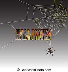 halloween, ragno