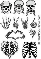 halloween, schedel, set, vector