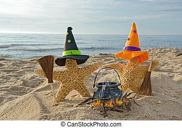 Halloween starfish on the beach - Starfish wearing witch's ...