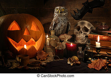 Halloween still life with pumpkin and owl