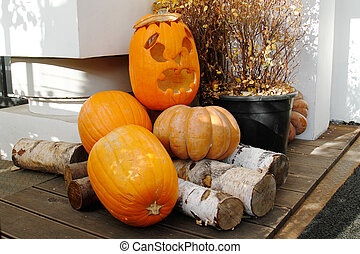 Halloween still life with pumpkins, firewood and plant