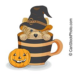 Halloween Yorkshire terrier dog in cup