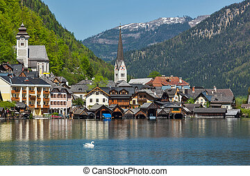 Swan in lake against Hallstatt village on Hallstätter See in Austrian alps. Salzkammergut region, Austria