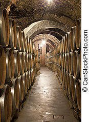 hallway of an old cellar with wine barrels