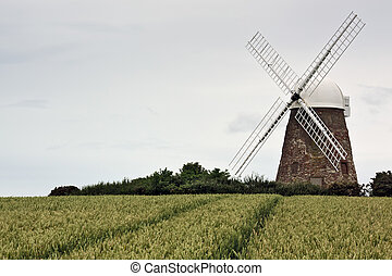 Halnaker windmill in Sussex