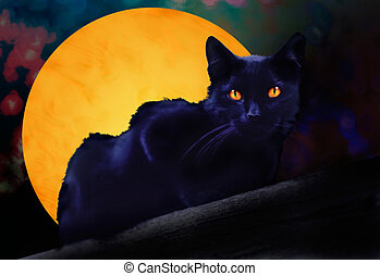 Black Cat with Full Moon