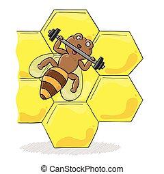 haltère, abeille