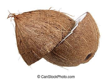 Halves of Coconut
