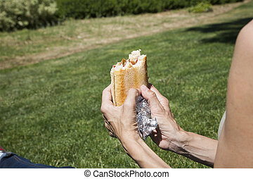 ham panini on the grass