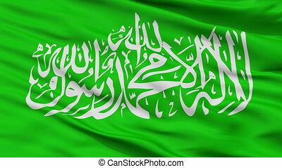 Hamas Flag Closeup Seamless Loop