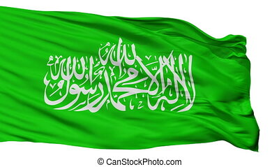 Hamas Flag Isolated Seamless Loop
