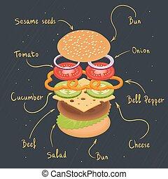 hambúrguer, infographics., vetorial, ilustração