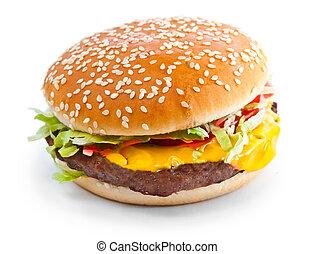 Hamburger closeup photo isolated on white