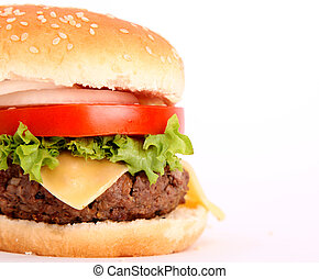 hamburger with bread, tomato, onion, lettuce, meat, cheese, ...