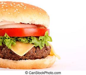 hamburger with bread,tomato,onion,lettuce,meat,cheese,ham,...