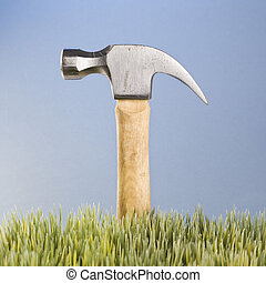 Hammer in grass.