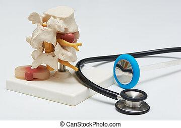 hammer, lumbal, scheibe, stethoskop, modell, hintergrund, vorgestanden abnormale körperöffnung, weißes, reflex