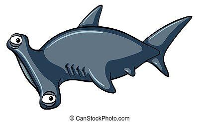 Hammerhead shark on white background illustration