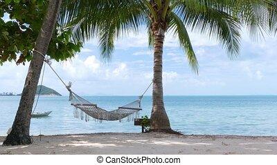 Hammock and palm trees on the beach - Hammock swinging on...
