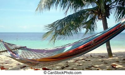 Hammock and palm trees on the beach. slow motion. 1920x1080