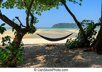 Hammock and tropical beach
