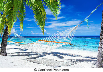 Hammock between palm trees on tropical beach
