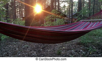 hammock hanging on a tree at sunset