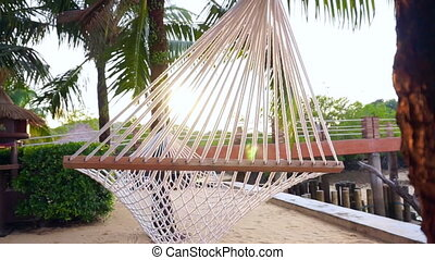 Hammock hung coconut tropical beach