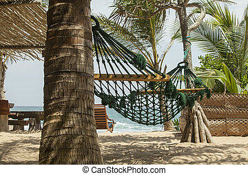 Hammock in the shades of palm trees on the beach of a resort