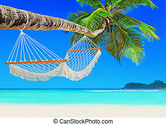 Hammock on coconut palm at tropical sandy ocean beach island...