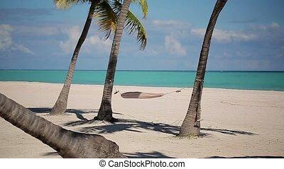 Hammock on the beach at sunny day