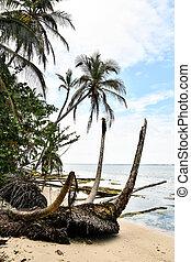 hammock on the beach, photo as a background