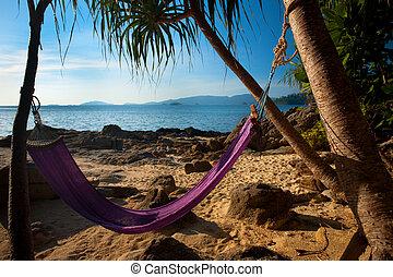 Hammock Secluded Jungle Beach - An inviting hammock on a...