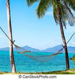 hammock under the palm trees on the island