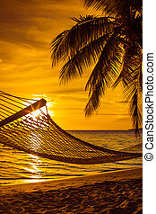 Hammock with palm trees on a beautiful beach at sunset