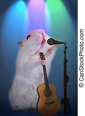 hamster as  music star with microphone and guitar on the stage