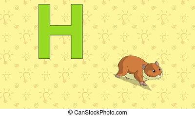 Hamster. English ZOO Alphabet - letter H - Animated English...
